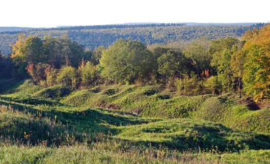 La forêt domaniale de Verdun, gardienne de l'histoire