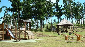 Les aires d'accueil équipées pour la récréation et le loisir reçoivent un public nombreux (ici, à Mamode Camp dans la forêt du Brûlé)