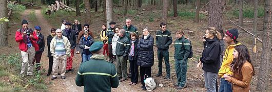 Le comité national d'orientation et les partenaires découvrent les vestiges archéologiques de la forêt indivise de Haguenau