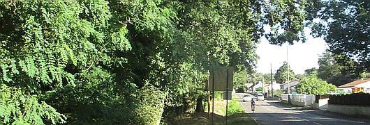 Les parcelles 15 et 16 sont très fréquentées (parcours sportif, sentier, piste cyclable, etc.) et se trouvent à proximité directe d'une route départementale.