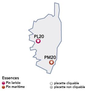 Renecofor - placettes - Corse