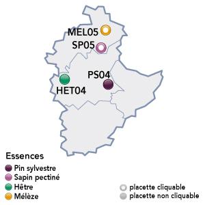 Renecofor - placettes - Provence Alpes Côte d'Azur