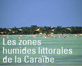 Vers le site Interreg Zones humides littorales