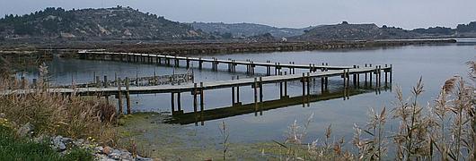 Les chemins de planches installés à fleur d'eau offrent une promenade insolite