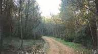 Chemin de la colline saint Jacques