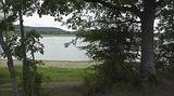 Le lac de la forêt d'Orient, dans l'Aube, est placé au cœur d'un immense massif forestier public