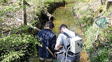 Pêche électrique dans le Hardtbach