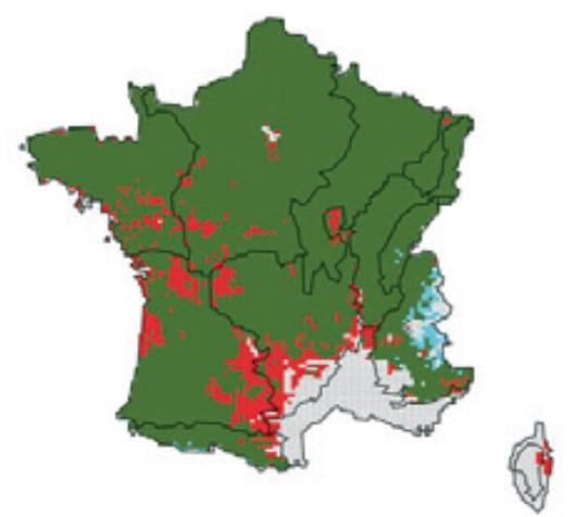 Sample simulation of the distribution range for beech in 2055 produced by the PHENOFIT model. In green: areas where the species is predicted to remain in place; in red: areas where the species is likely to have disappeared by 2055; in blue: areas the species may colonise in 2055
