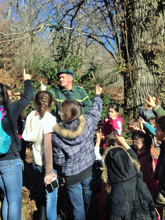En forêt de Pineta, l'animateur ONF apprend aux écoliers la flore et la faune insulaire.