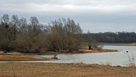 La forêt du Der se situe sur les terres argileuses mais fertiles de la Champagne humide : le relief y est peu marqué et les eaux ne s'infiltrent pas