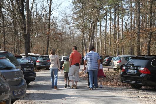 Un Parking En Forêt De Fontainebleau