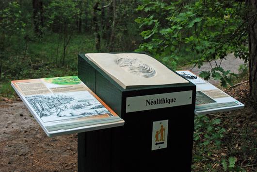 Le sentier de l'art rupestre retrace les différentes périodes des gravures dans la forêt