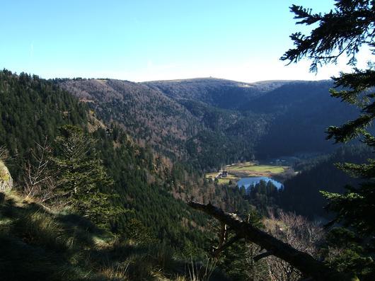 Point de vue de la forêt de Gérardmer