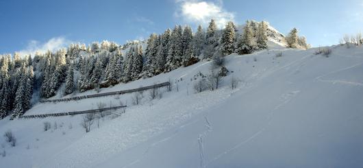 Des paravalanches installés à flanc d'un versant enneigé