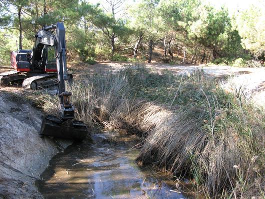 La pelle mécanique effectue une opération d'étrépage et de reprofilage de cette mare dunaire