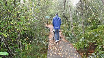 Un cheminement en bois permet la découverte de la lagune