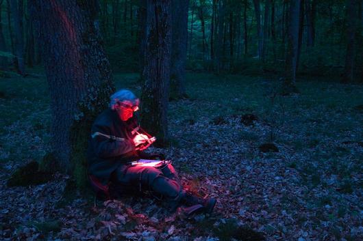Un forestier de l'ONF effectue un inventaire de chauves-souris la nuit
