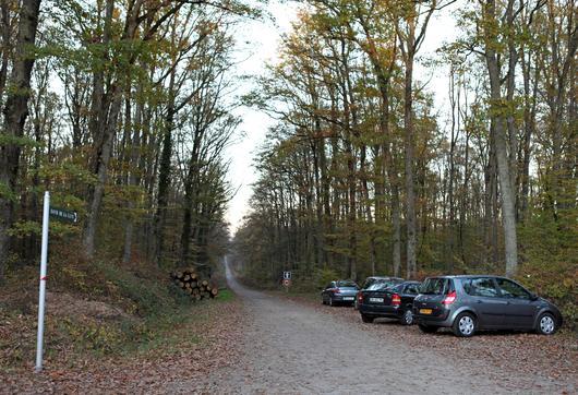 Il est important de laisser libre l'accès aux routes forestières