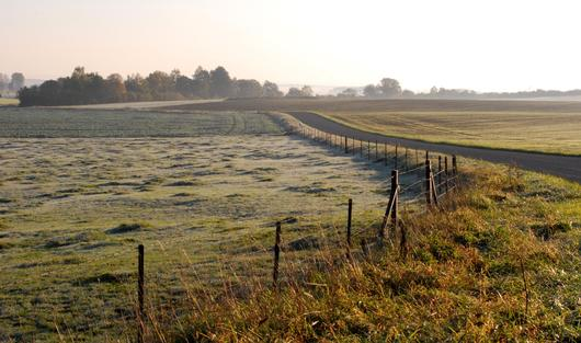 Une route qui serpente entre les champs