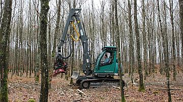 Exploitation des bois sur sol sensible avec des engins adaptés