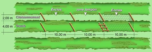 Schéma d'un enclos/exclos