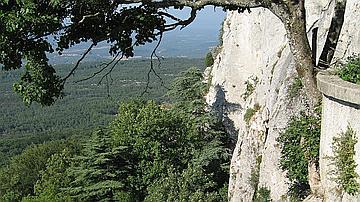 La forêt méditerranéenne au pied de la montagne de la Sainte-Baume