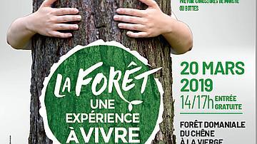Affiche Journée internationale des forêts 2019
