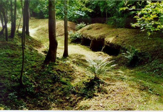Un retranchement d'artillerie sur la Crête de Froideterre, en forêt de Verdun