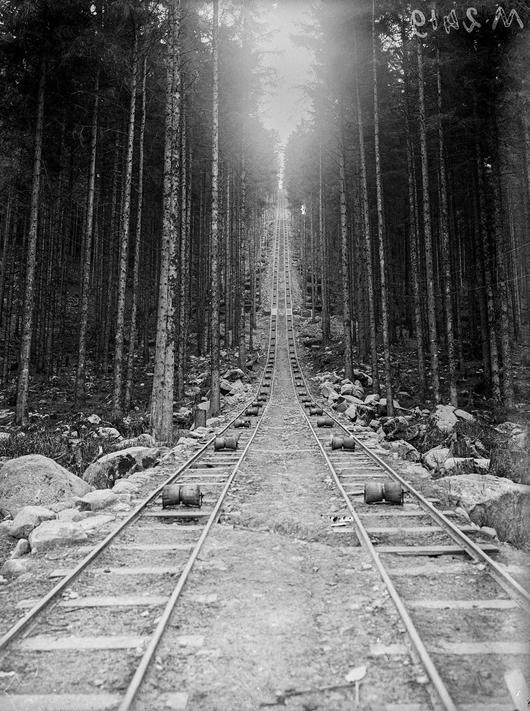Des voies étroites, de 60 cm de large, permettent de sortir le bois des forêts (Vosges, août 1916)