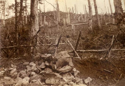 Photo en noir et blanc de la crête des Vosges