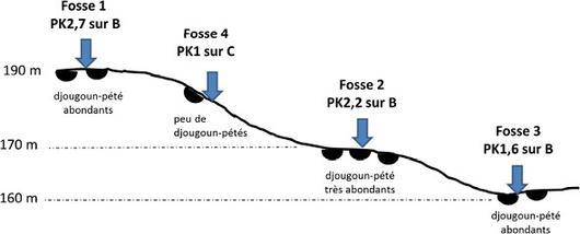 schéma de répartition djougoun-pété