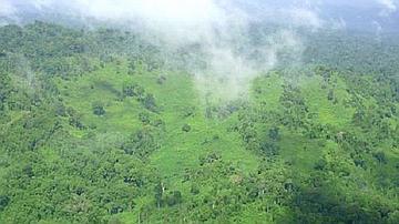 Cambouzes du mont Dékou-Dékou