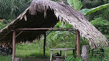 Construction en bois et en feuilles de palmiers