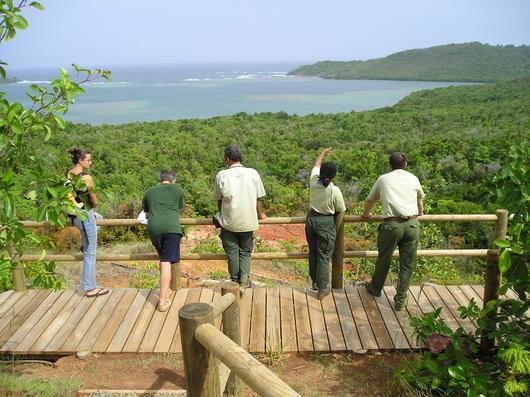 Agents de l'ONF, organisme en charge de la gestion d'une grande partie des milieux humides littoraux dans les départements d'Outre-Mer