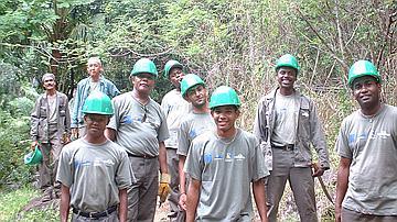 Equipe d'ouvriers en insertion dans la forêt de la Providence
