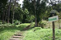 Entrée de l'arboretum de la Donis (Pitons du Carbet)