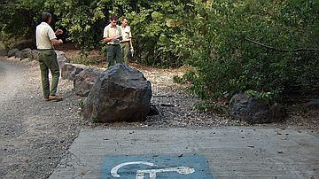 Etude pour un aménagement tous publics (Forêt domaniale littorale de l'Anse Michel)