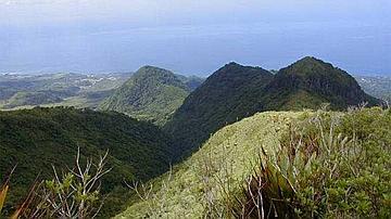 Versants nord de la réserve biologique domaniale intégrale de la montagne Pelée