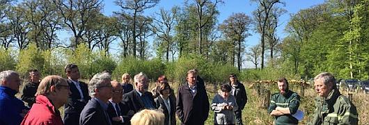 Stratégie Filière Forêt-Bois