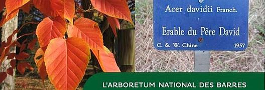 Sans étiquette, une collection botanique n'est plus qu'un simple jardin.