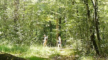 La forêt domaniale du Gâvre, un atout touristique grandeur nature pour le département...