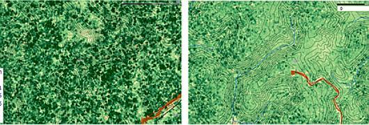 Figure 1 : Haute futaie - hauteur moyenne mnc zone exploitable 32 m/ Figure 2 : Forêt à saprolite - hauteur moyenne mnc zone exploitable 25 m