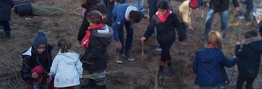 Près de 300 enfants mobilisés pour planter des oyats !
