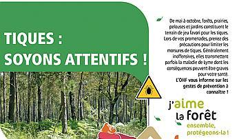 Tiques : quelques règles simples à appliquer lors de vos balades en forêt !