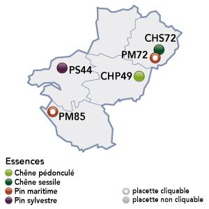 Renecofor - placettes - Pays de la Loire
