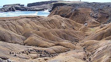 Formations rocheuses de la savane des Pétrifications ( forêt domaniale littorale de Cap Chevalier)