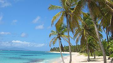 Les plages sont des lieux de détente appréciés de tous