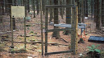 Lieu de prise de mesure en forêt
