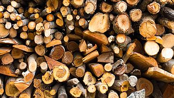 Pile de bois destinée au bois énergie