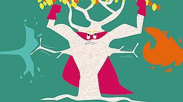 Le chêne liège